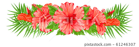 Watercolor composition with red hibiscus flowers. Hand drawn floral border with tropical flowers and leaves. Wedding invitation, greeting card, design. Red flowers.  61246307