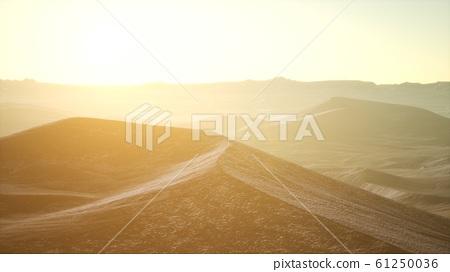Aerial view on big sand dunes in Sahara desert at 61250036