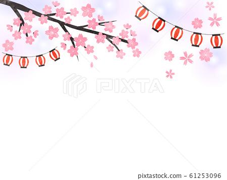 초롱과 벚꽃 61253096