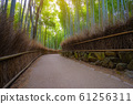 Path in bamboo forest in Kyoto Arashiyama park, Japan 61256311