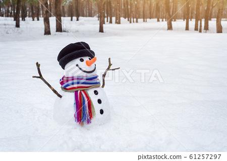 Snowman in winter park 61257297