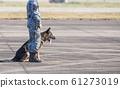 Smart police dog sitting outdoors. Brown German 61273019