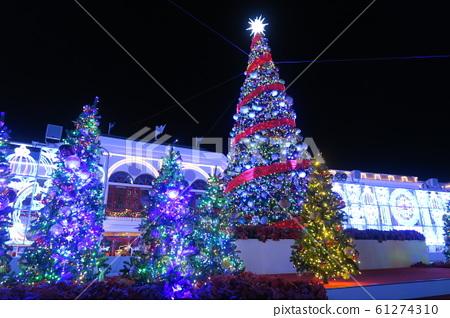 Christmas tree 61274310