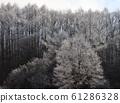 Winter landscape, winter scenery 61286328