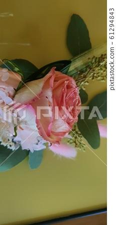 분홍꽃 61294843