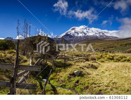 Chimborazo Volcano in Ecuador 61308112