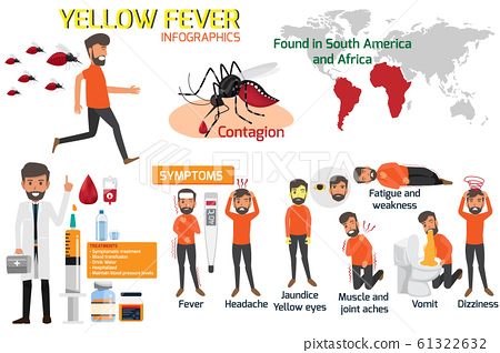 Yellow fever infographic elements. Symptoms, 61322632