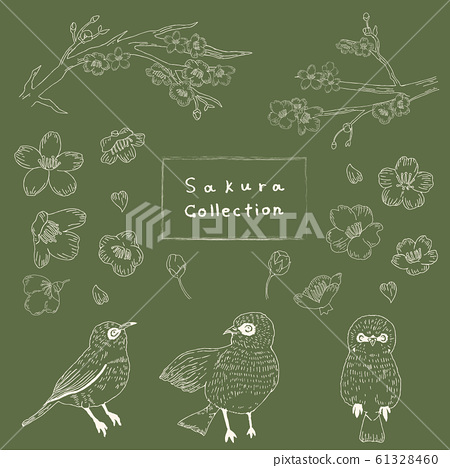 Cherry blossom, warbler, hand-painted, material, illustration, set, white line 61328460