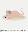 cute rat mouse animal sleep 61339825