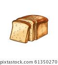 White bread, sketch toast slices 61350270