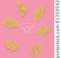 Ginkgo biloba leaves 61350542