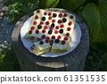Gourmet homemade raspberry 61351535