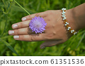 female hands with flower l 61351536