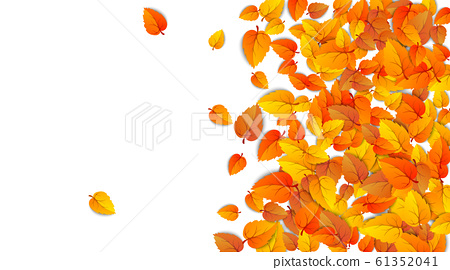 Autumn advertising banner with half leaves isolated on white background for autumn fall sale. Presentations poster layout decorated leaf for shopping sale or promo poster design. Vector illustration 61352041