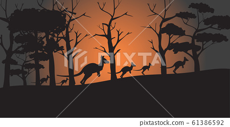 silhouettes of kangaroos running from forest fires in australia animals dying in wildfire bushfire natural disaster concept horizontal 61386592