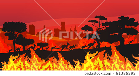 silhouettes of kangaroos running from forest fires in australia animals dying in wildfire bushfire burning trees natural disaster concept intense orange flames horizontal 61386595