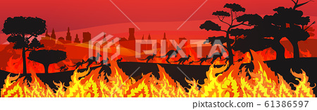 silhouettes of kangaroos running from forest fires in australia animals dying in wildfire bushfire burning trees natural disaster concept intense orange flames horizontal 61386597