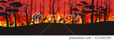 silhouettes of kangaroos running from forest fires in australia animals dying in wildfire bushfire burning trees natural disaster concept intense orange flames horizontal 61386599