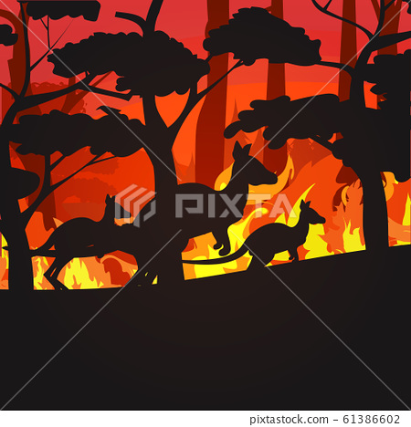 silhouettes of kangaroos running from forest fires in australia animals dying in wildfire bushfire burning trees natural disaster concept intense orange flames 61386602