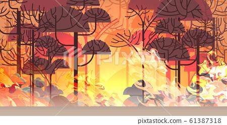 dangerous wildfire bush fire development dry woods burning trees global warming natural disaster concept intense orange flames horizontal 61387318