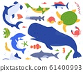 Sea animals species. Ocean animals in their natural habitat. Cute whale, dolphin, shark and turtle vector illustration set. Undersea world pack. Water plants seaweed and algae collection 61400993