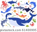 Ocean animals. Cute fish, orca, shark and blue whale, marine animals and sea creatures illustration vector set. Undersea world pack. Seaweed, algae and water plants clipart collection 61400995