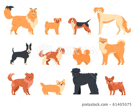 Dogs breed character. Purebred dog pedigree, cute puppy pug, beagle, welsh corgi and bull terrier, funny domestic pets vector isolated illustration icons set. Human companion. Cartoon animal pack 61405075
