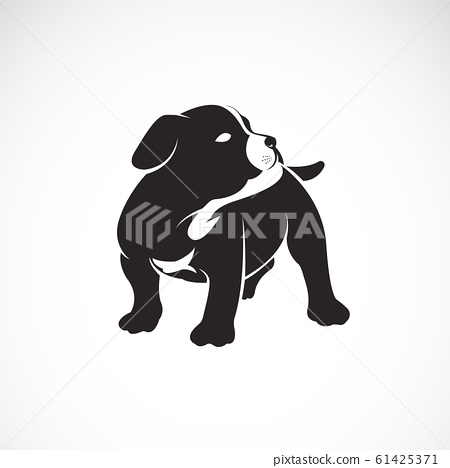 Vector of puppy on white background. Dogs. Pet. 61425371