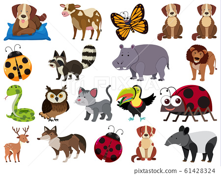 Set of isolated objects theme wild animals 61428324
