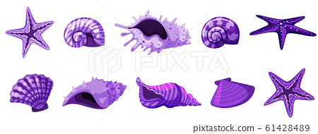 Set of isolated  seashells in purple color 61428489