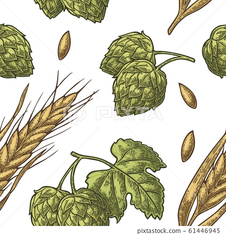 Seamless pattern from hop with leaf and Ear of 61446945