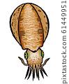 藍魷魚圖(顏色2) 61449951