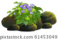 Little purple flowers on white background 61453049