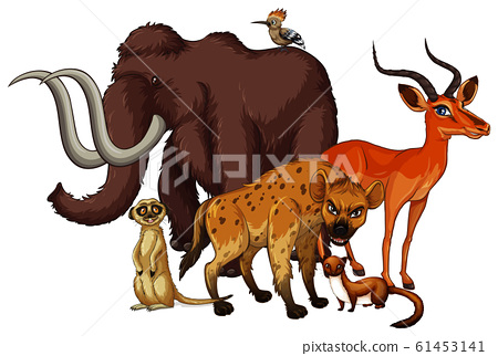 Isolated picture of many animals 61453141