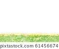 Rape field watercolor illustration 61456674