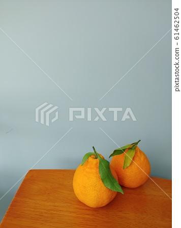 픽스콘,과일,한국,제주도,한라봉,제주한라봉,제주도과일,과일이미지,배경이미지,과일배경, 61462504