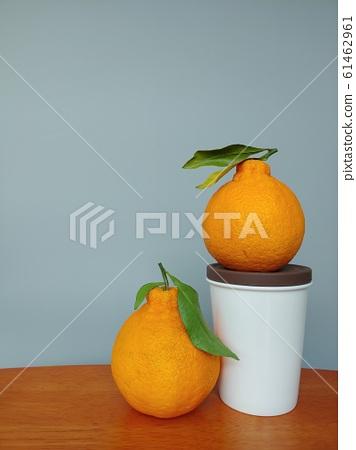 水果,韓國,濟州島,哈拉邦,濟州哈拉邦,濟州島水果,水果圖片,背景圖片,水果背景, 61462961