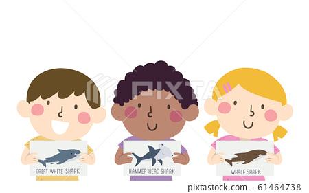 Kids Hold Different Kinds Shark Illustration 61464738