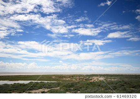 나미비아 에토샤국립공원 지평선과 하늘  61469320