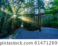 [Mie Prefecture] Sunbeams through Ise Jingu, Geku, and approach to the shrine 61471269