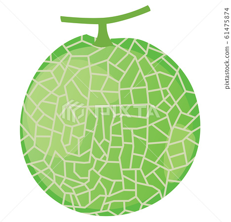 Illustration of melon with mesh 61475874