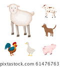 Isolated object of farm and food symbol. Set of farm and countryside stock symbol for web. 61476763