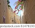 몰타 꽃 나무 61478193