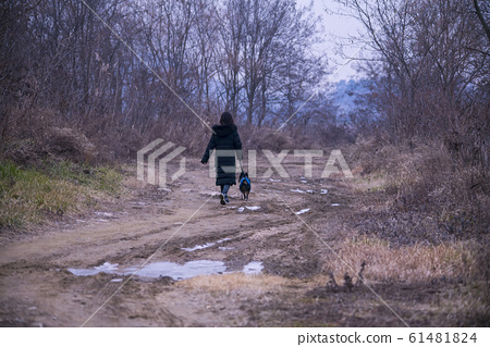 시흥갯골생태공원,시흥시,경기도 61481824