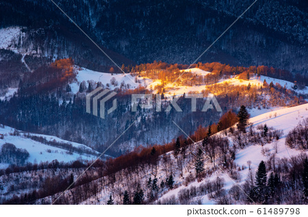 winter countryside scenery at dawn 61489798