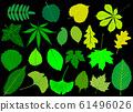 tree leaves green set, 61496026