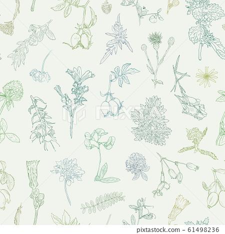 Wildflowers berries seamless pattern Hand drawn vector botanical illustration Background dogrose, burdock, herbs 61498236