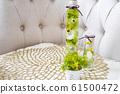 식물 표본 상자 61500472