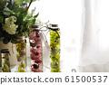 식물 표본 상자 61500537