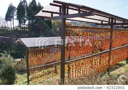 幹柿子飯 61522901